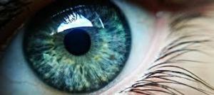 eye cream, skin treatment
